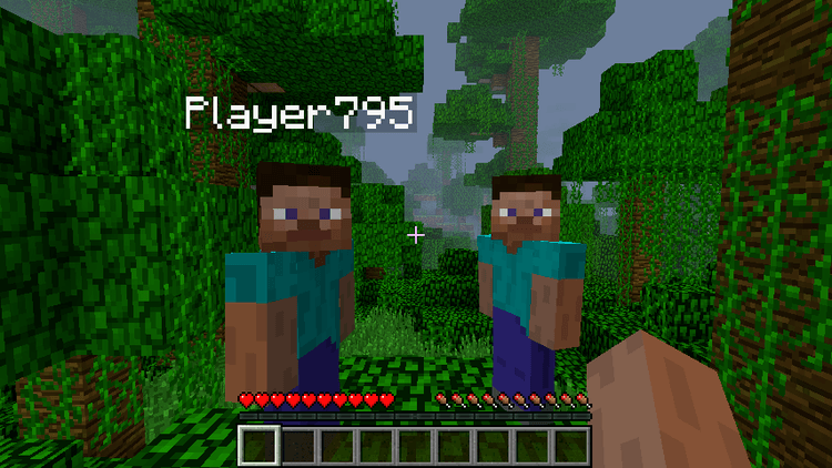 Hide-Names-Mod-for-Minecraft-1.png